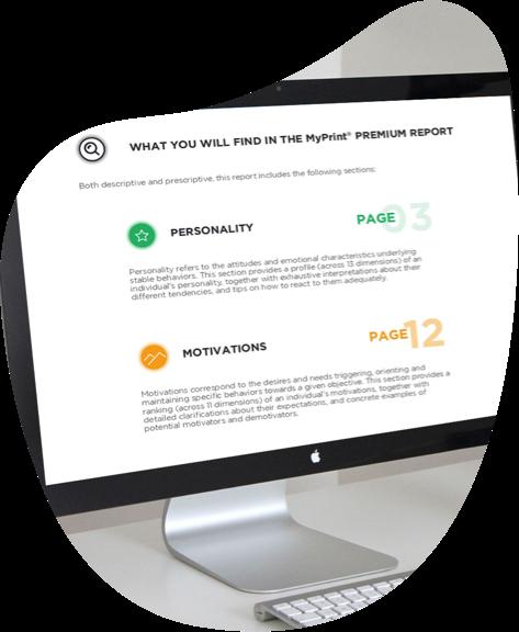 Premium Report shown on a desktop screen